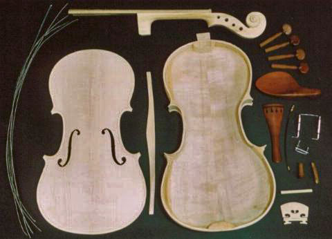 Violin made from maple and sycamore