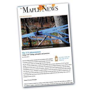 The Maple News 3/16 Phenomena